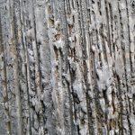 Zaprawy i tynki wśród materiałów budowlanych